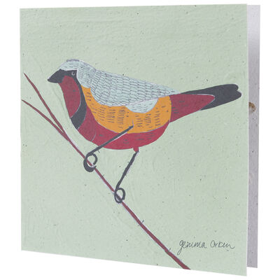 Gemma Orkin Sage Bird Card