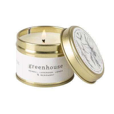 Amanda Jayne Greenhouse Candle in Gold Tin