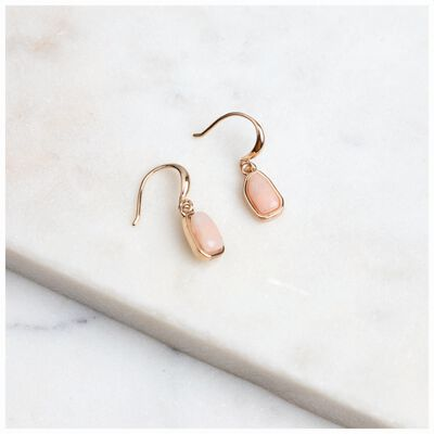 Mini Stone Drop Hook Earrings